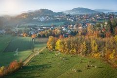 Luftaufnahme von Maria Laach mit Kühen auf der Weide im Herbst
