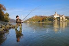 Wachau. Ein Fischer der auf Raubfische fischt. Ruhige Herbststim